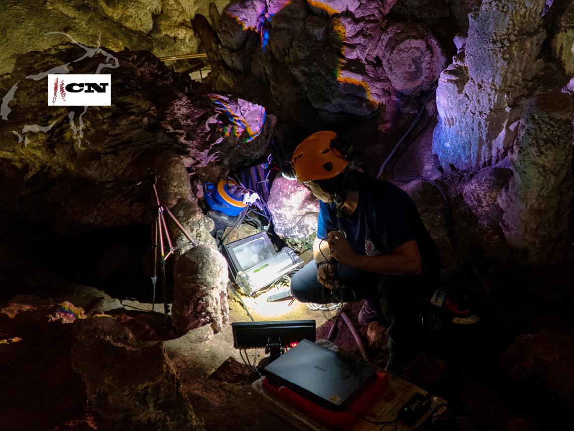Conservación de la Cueva de Nerja